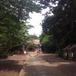息栖神社( ´ ▽ ` )ノハゼの天ぷら💗