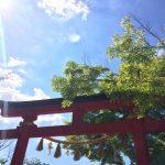 また高尾山( ´ ▽ ` )ノ