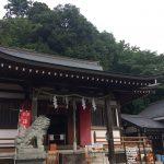 白山神社で鳥と蝶⛩