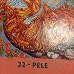 9月22日の一枚  22番PELE