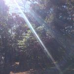 癒し@白山神社