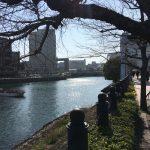 伊勢山皇大神宮と成田山横浜別院(^^)/